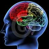Photos of Neuro Physiotherapy Exercises